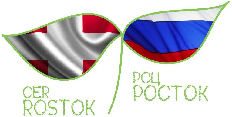 РОЦ Росток - российский образовательный центр Росток